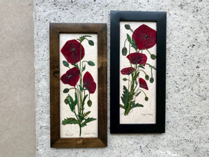 flanders poppy framed artwork available in black and brown frame