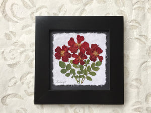 dried rose framed artwork handcrafted in Canada by Pressed Wishes