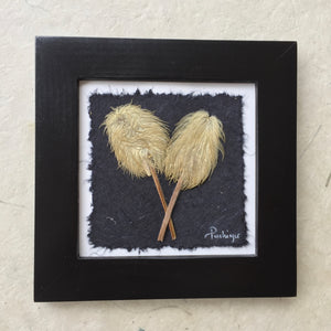 pressed anemone (hippie on a stick) Black frame; Dried Flower Art