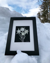 10x14 Pressed Edelweiss with Matte 'True Love & Sacrifice'