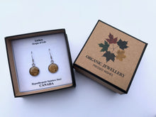 stainless steel lichen earrings in Pressed wishes box