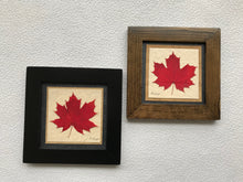 Dried Leaves; framed pressed red maple leaf with handmade paper and available in a black and walnut fram