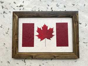 real pressed maple leaf canadian flag with handmade paper in walnut frame