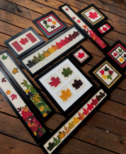 The Maple Leaf Collection by Pressed Wishes; showcasing pressed leaf artwork