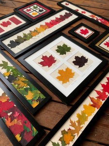 Dried Maple Leaves - The Maple Leaf Collection by Pressed Wishes; showcasing pressed leaf artwork