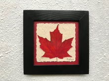 pressed maple leaf framed artwork with red handmade paper and black frame
