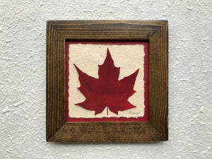 Dried Leaves; pressed maple leaf framed artwork with a walnut frame and red handmade paper
