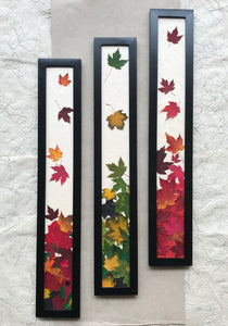 THE SKINNY Pressed Maple Leaf framed Art set of 3; red, green and multi colour