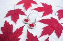 Real Pressed Red Maple Leaf Dangle Earrings by Pressed Wishes