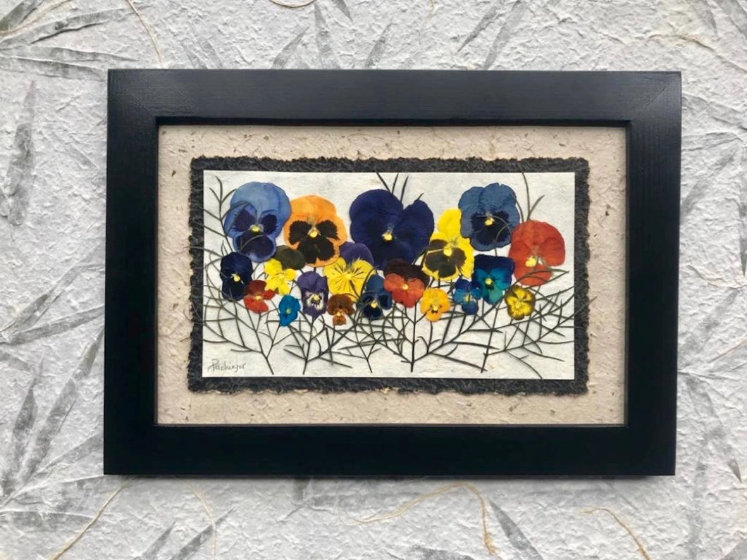 real pressed flower pressed colourful pansy family photo ONE OF A KIND home decor by Pressed Wishes