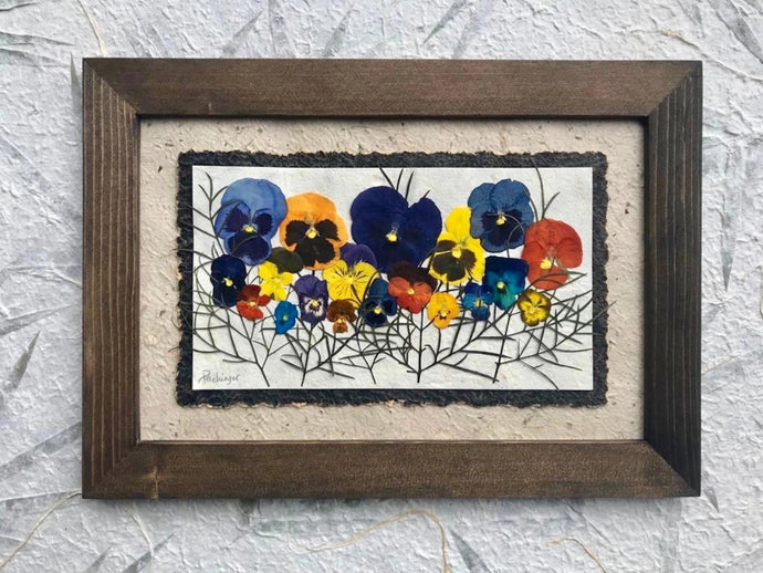 Real Pressed Pansy framed artwork with walnut handmade frame by Pressed Wishes