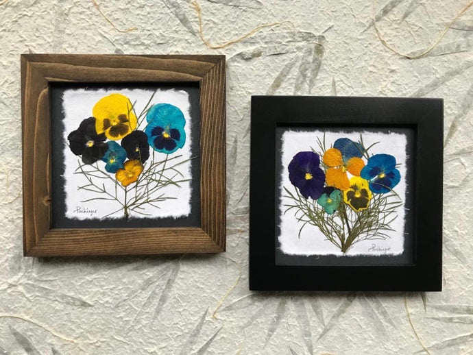Real Pressed Pansy framed SIGNED ORIGINAL artwork by Pressed Wishes