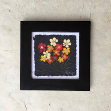 dried flowers; pressed colourful potentilla with black frame; handcrafted
