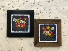 dried flowers; pressed potentilla framed artwork handcrafted in canada. black and walnut frame