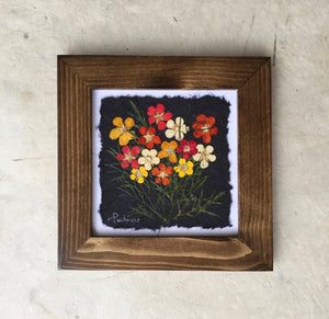 pressed potentilla framed artwork made in canada