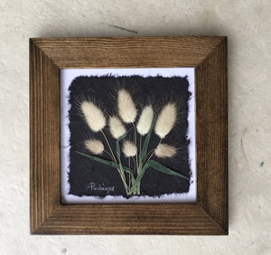artisan made pressed bunnytail framed art_walnut frame