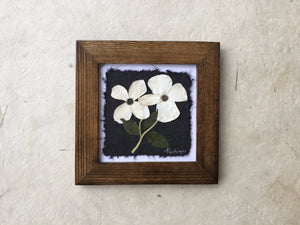 Dried Flowers; dogwood is the provincial flower of BC _ pressed floral art