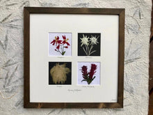 Framed Floral Artwork Home Decor with solid Canadian wood frame by Pressed Wishes