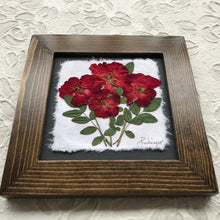 pressed rose framed artwork with walnut frame handcrafted in Canada