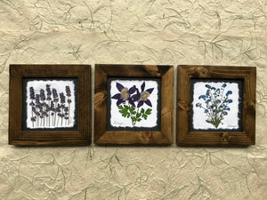 set of 3 dried floral pictures available in walnut frame.