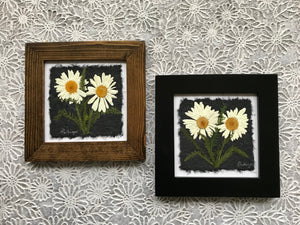 dried daisy; pressed white shasta daisy framed art with black and walnut frame