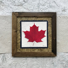 dried single maple leaf framed artwork with green handmade paper and a brown frame