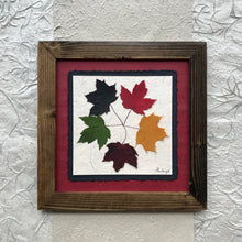 Dried Maple Leaves; The tattoo; pressed maple leaf framed artwork with red handmade paper and brown frame