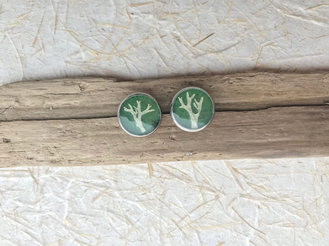 lichen tree of life stud earrings with green back ground. Stainless steel