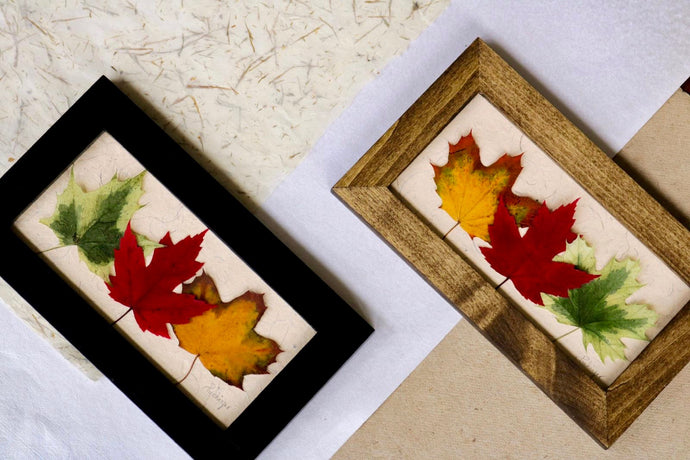 pressed maple leaf original artwork