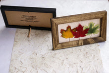 real pressed maple leaf home decor comes with dowel to stand on its own