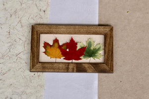real dried maple leaf original artwork with handmade walnut wood frame