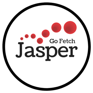 Jasper Go Fetch