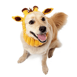 Load image into Gallery viewer, Doggie Hoods - Jasper Go Fetch