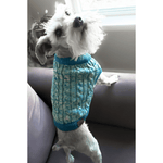 Load image into Gallery viewer, Dog Sweaters by CC Beanie - Jasper Go Fetch