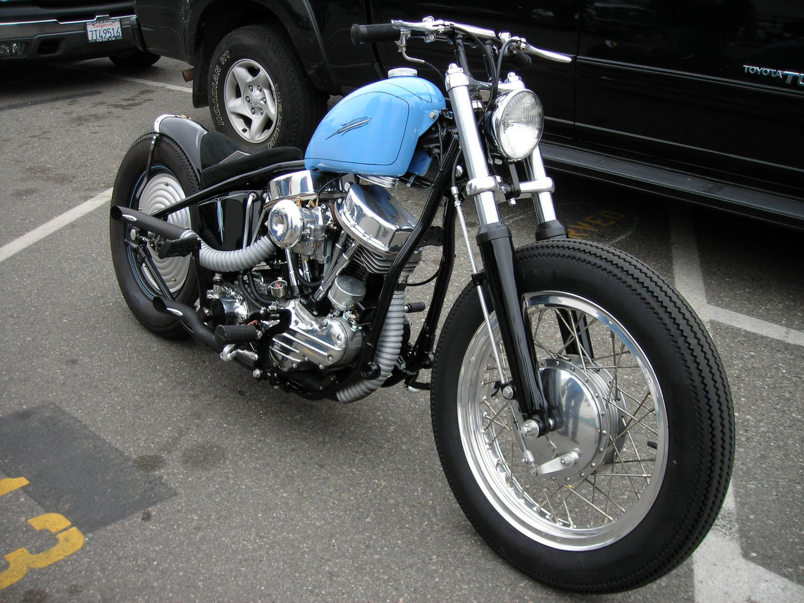 Picture Perfect Panhead