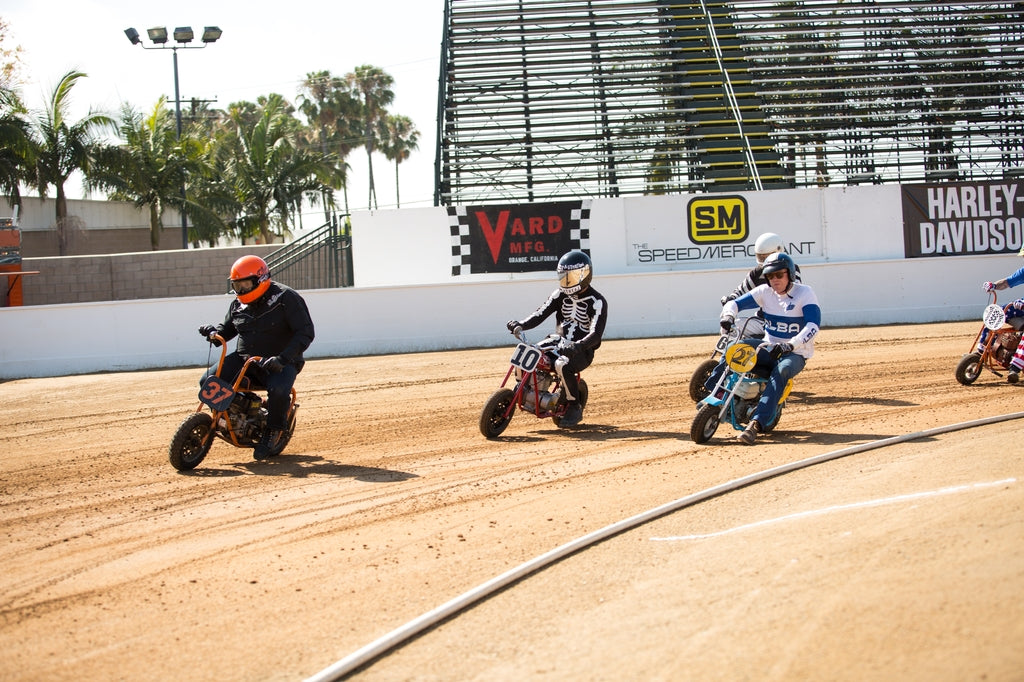 Born Free Stamped Flat Track Racing