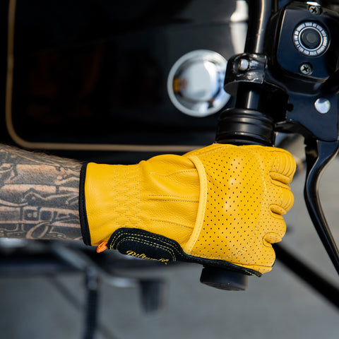 Borrego Gloves - Gold/Black