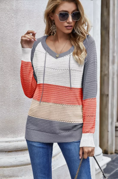 Lyndee - Colorblock Hooded Knit Sweater Top