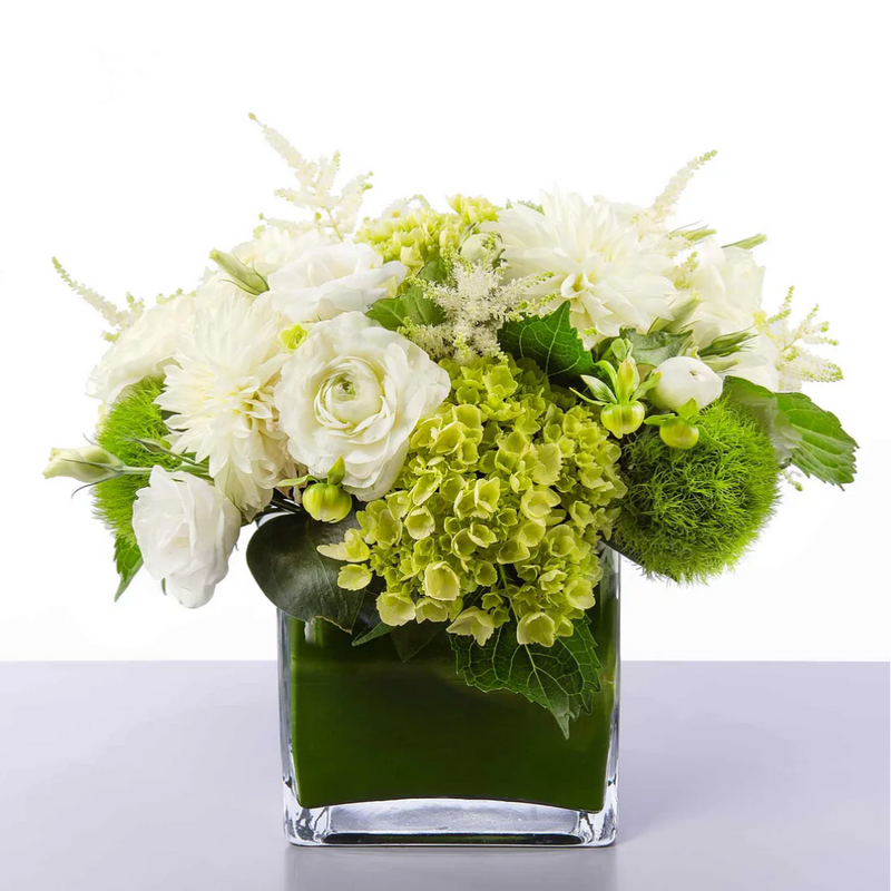 Green Hydrangeas & White Roses