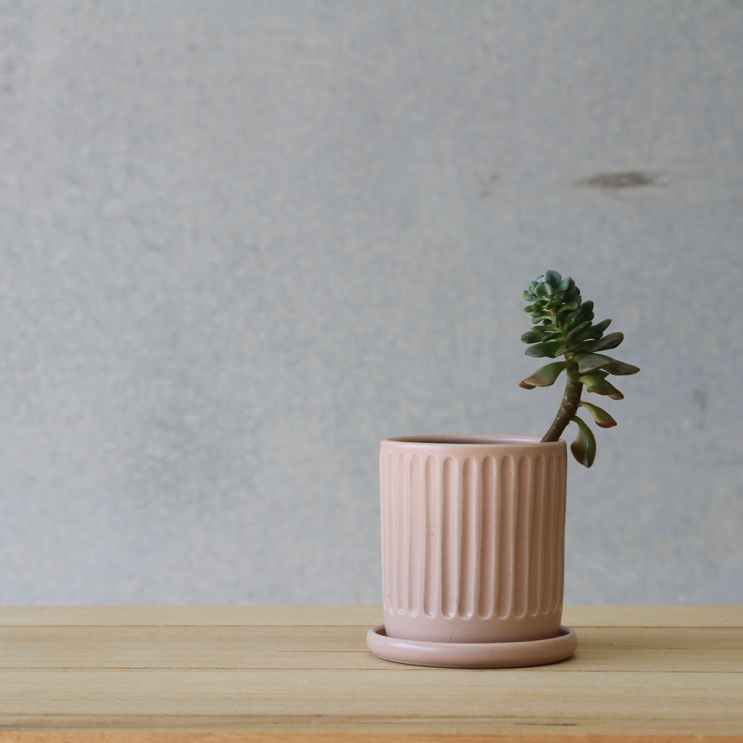 *NEW* Fluted Planter Blush