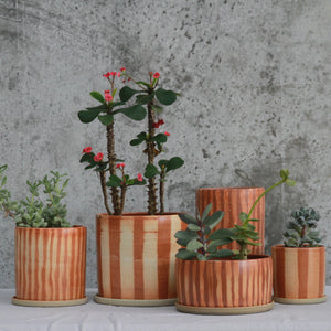 Fire on Clay Planter- Lines