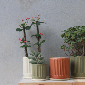 Fluted Planter Sage/Rust/White