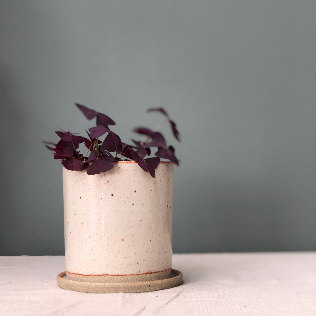 Minimalist Planter- natural