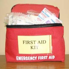 First Aid Kit, Professional