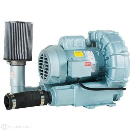 Sweetwater® Regenerative Blowers & Parts