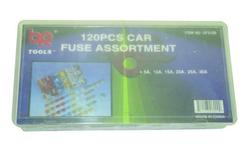 120 Piece Assorted Car Fuses