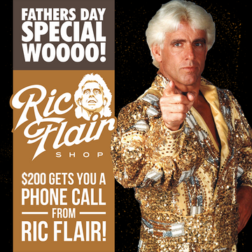 The Fact File of Ric Flair