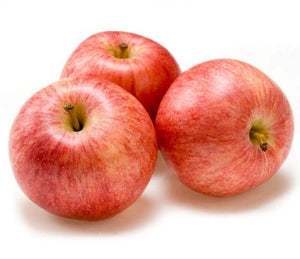 Royal Gala Apples - Evansfoods