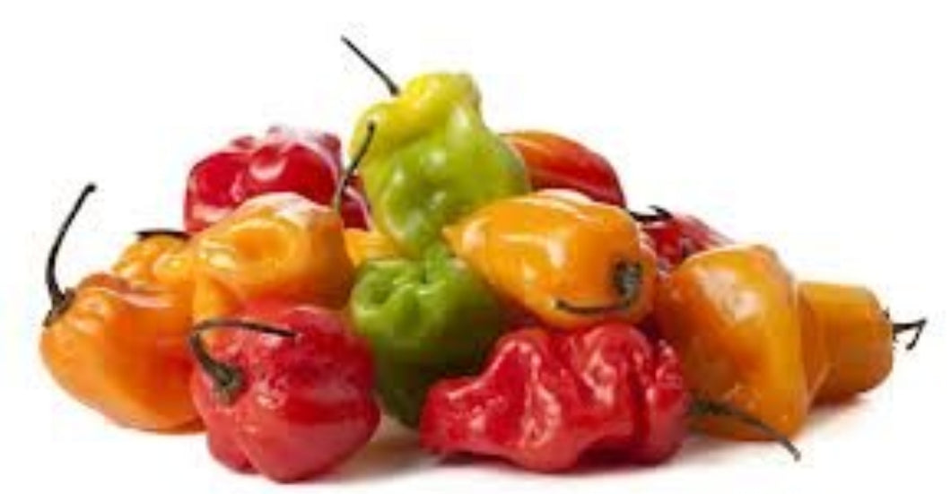 Scotch Bonnet Hot Peppers - Evansfoods