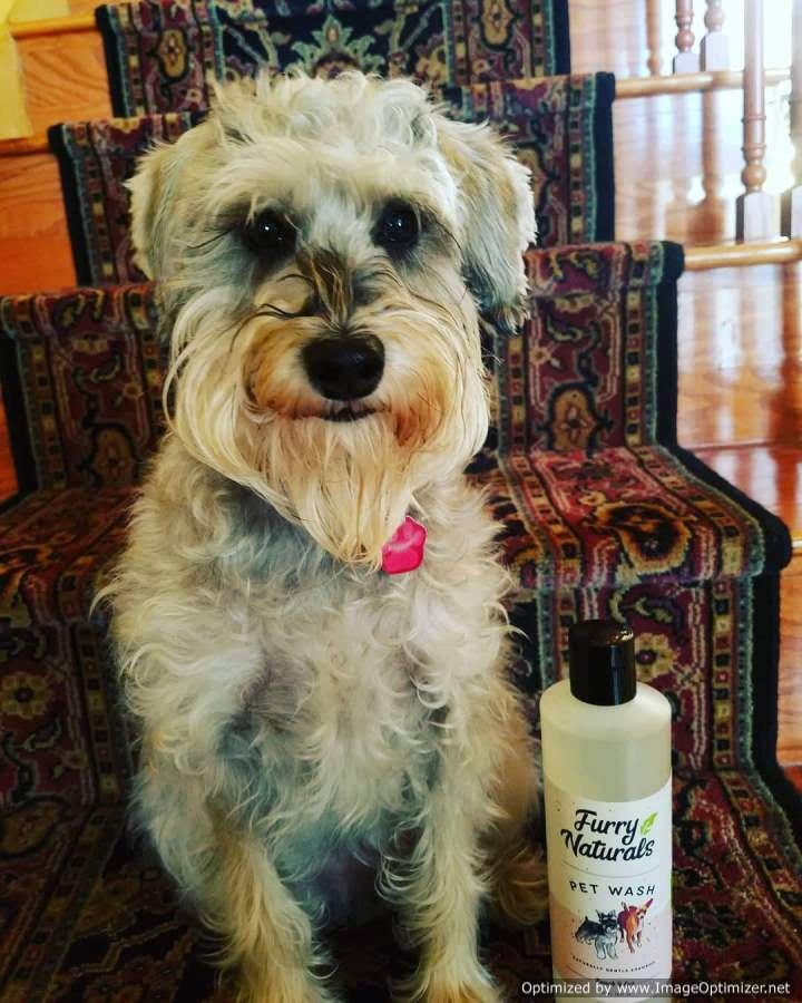 Peaches & Cream Dog Shampoo 16oz - Furry Naturals